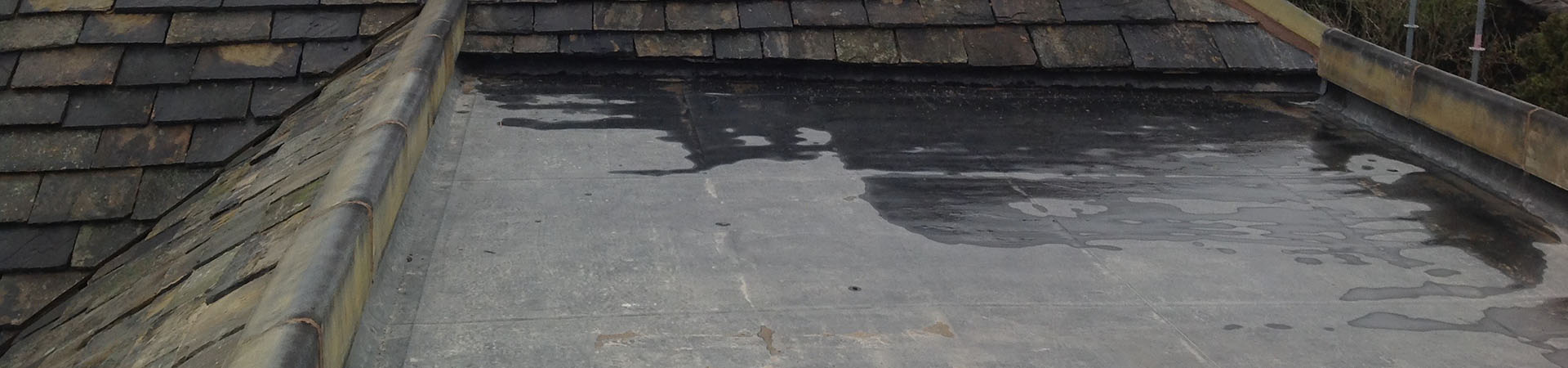 single ply roofing, flat roof